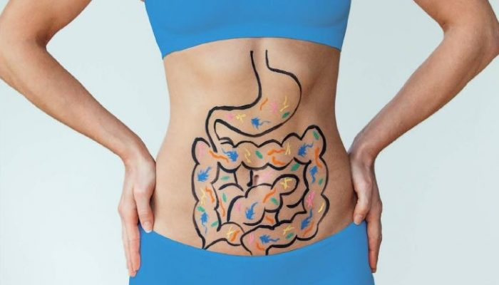 Gut-health_feature