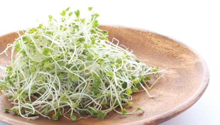health-benefits-of-eating-sprouts-for-your-hair