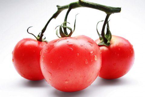 tomatoes_red_vegetables_vitamins_vegetarian-1329293